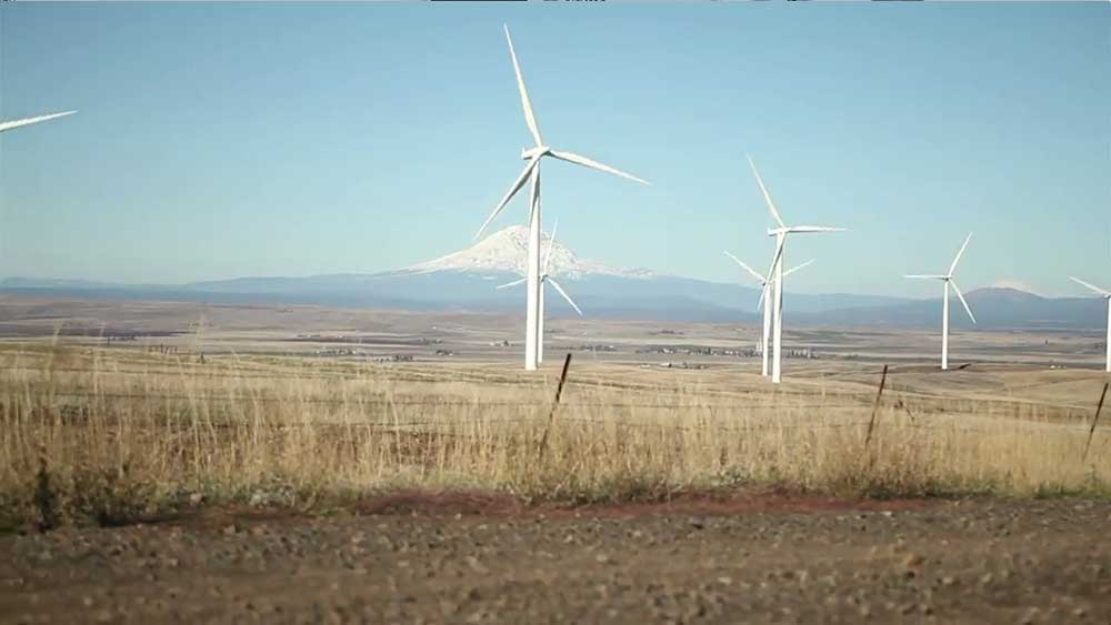 Clean Tech at Washington State